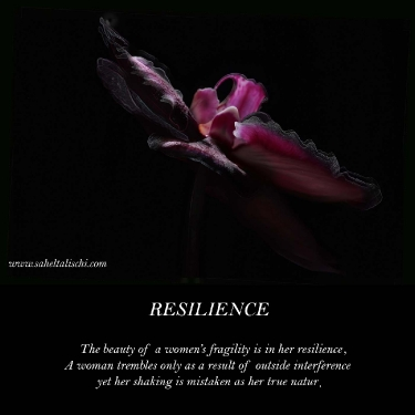resilience_11