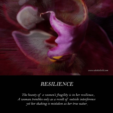 resilience_13