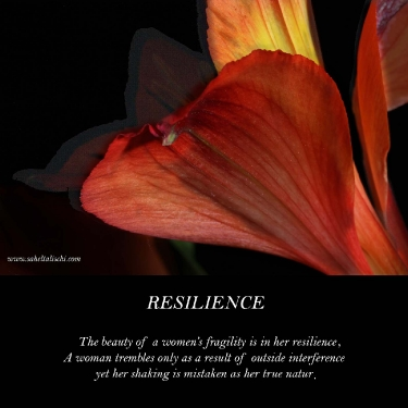 resilience_4