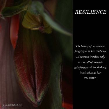resilience_6