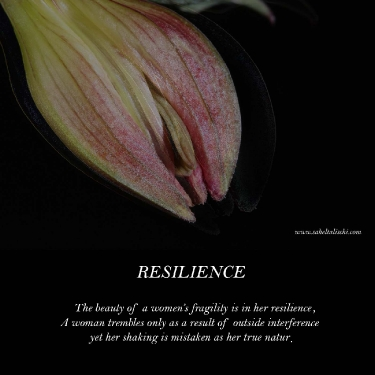 resilience_7